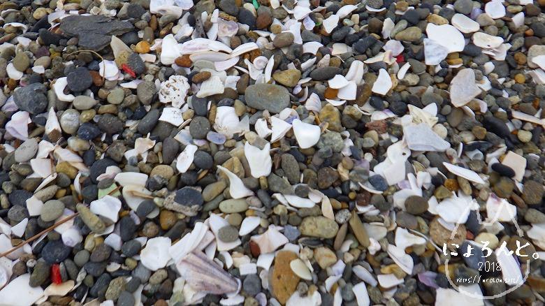 葛西臨海公園・西なぎさの砂