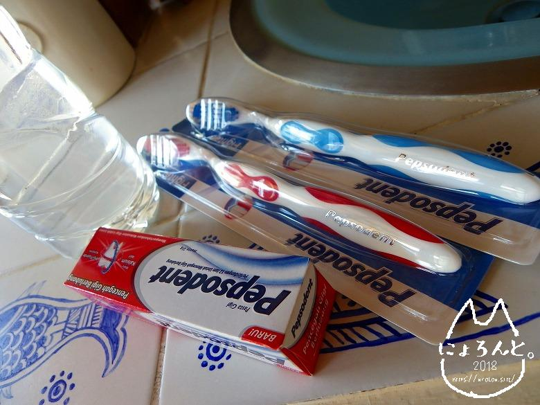 バリのスーパーで買った歯磨き粉&歯ブラシ