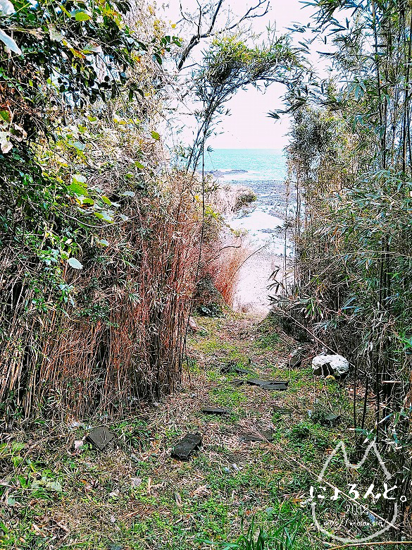 河津浜へと続く道・出口