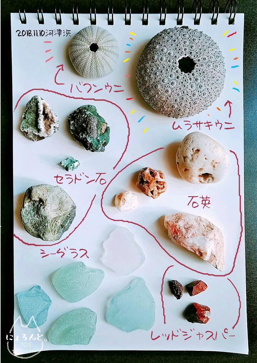河津浜で私が拾った石図鑑