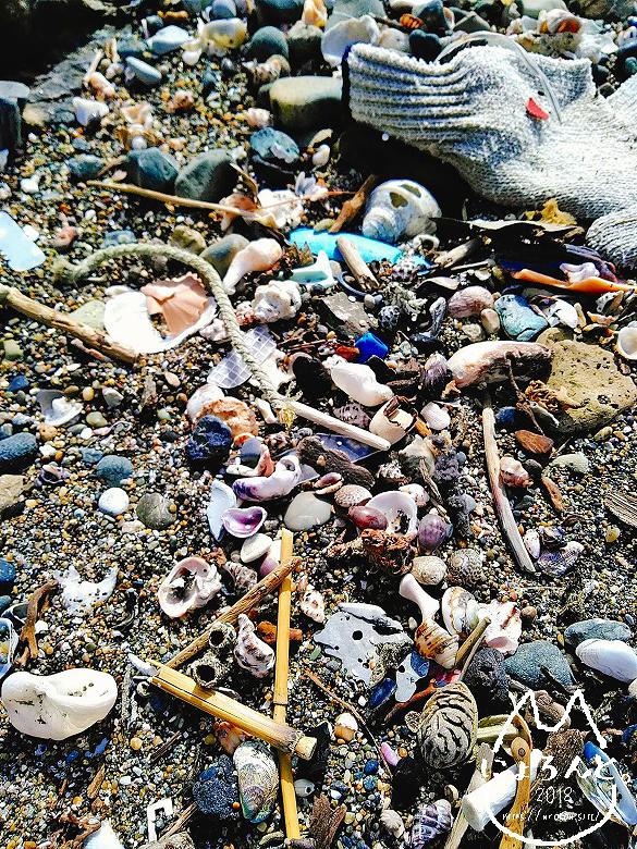 立石海岸・貝がらだまり