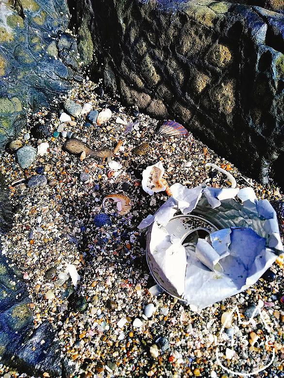 立石海岸・空き缶