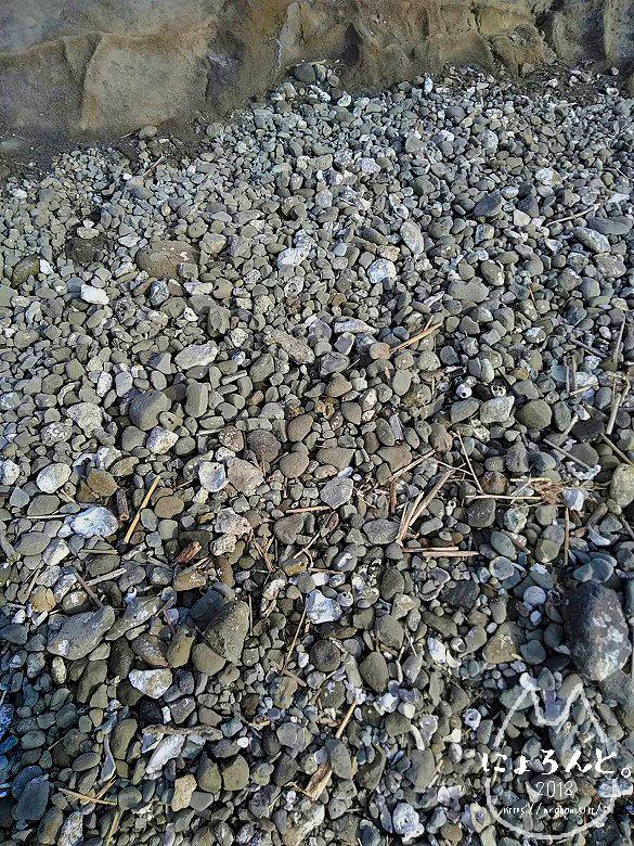 一式海岸・石のアップ