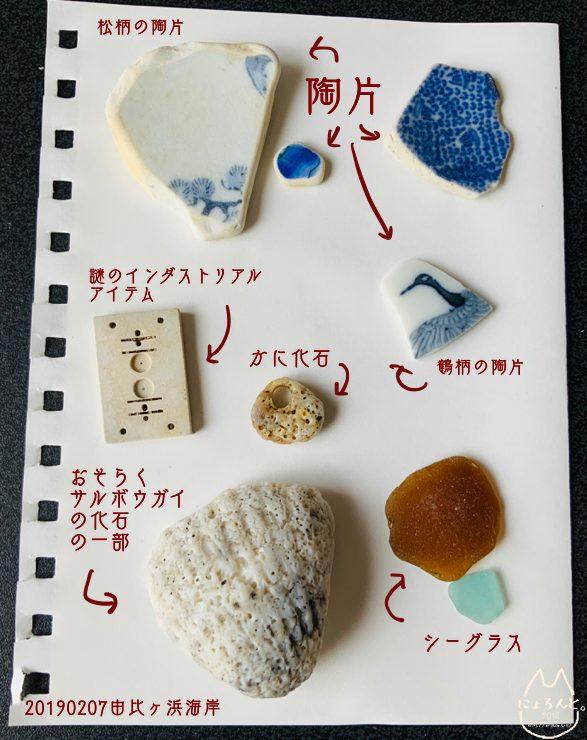 由比ヶ浜で拾った石と貝