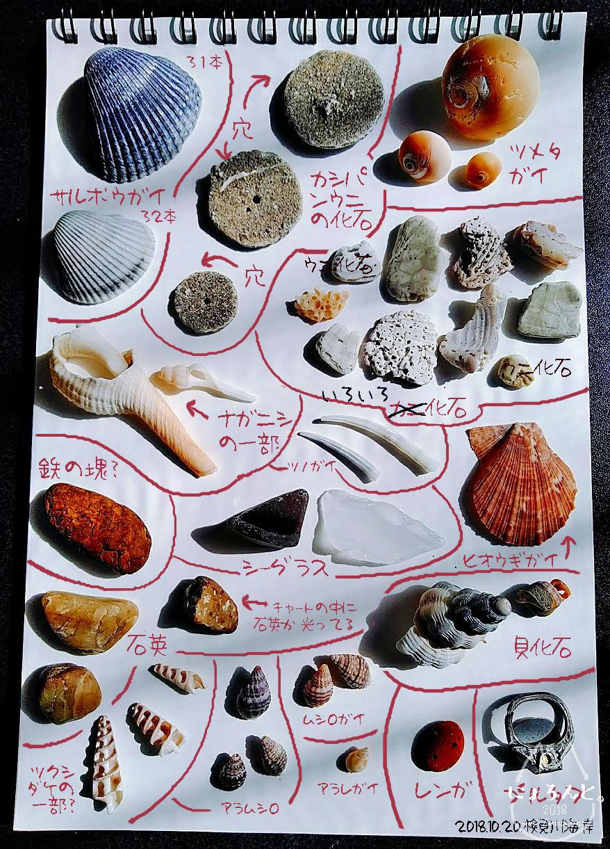 「検見川浜」で拾った石で思い出の『私が拾った石図鑑』訂正版