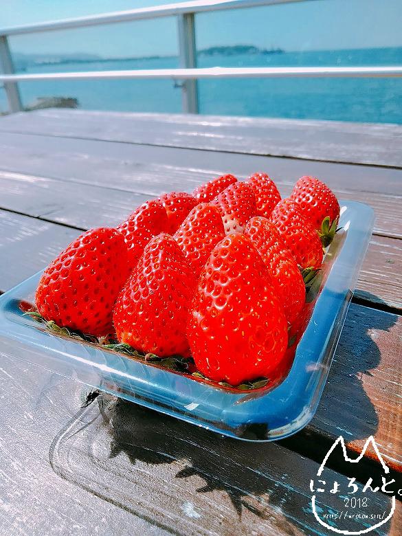 「渚の駅」展望台で苺