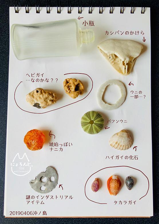 「沖ノ島海岸」で拾った石で思い出の『私が拾った石図鑑』作り