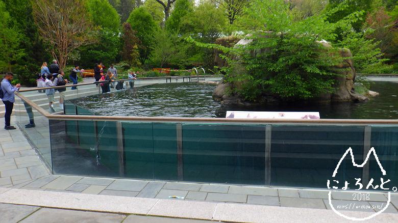 ニューヨーク・セントラルパーク動物園・水槽
