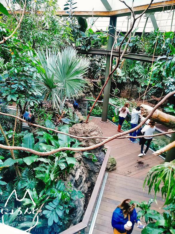 ニューヨーク・セントラルパーク動物園・温室