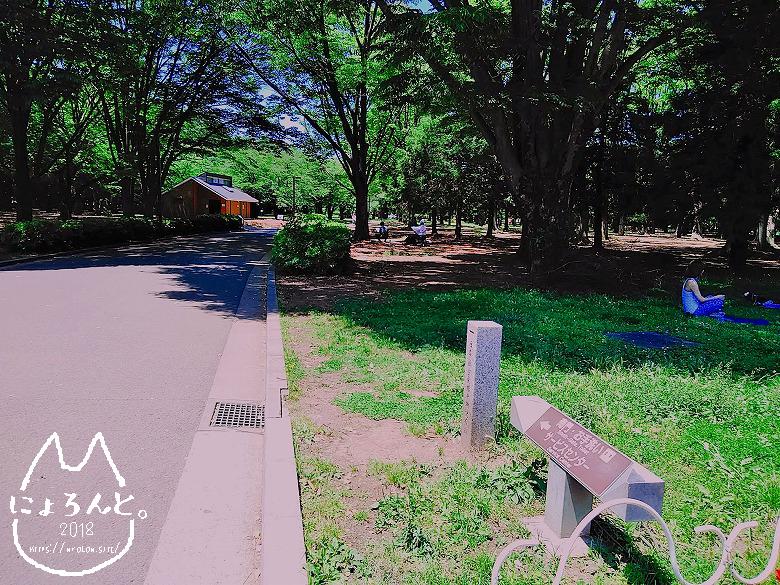 ラオフェス/代々木公園