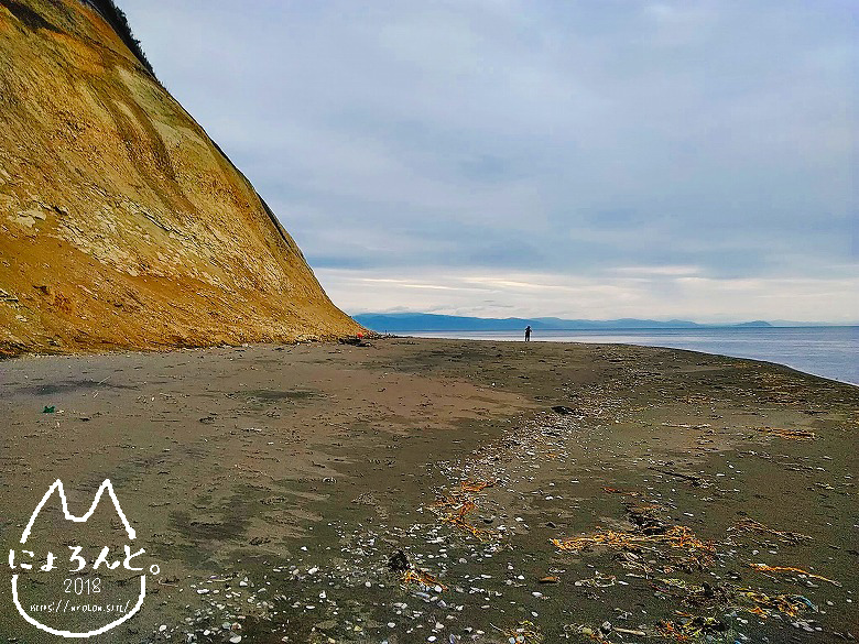 北海道・望来海岸でビーチコーミング/望来
