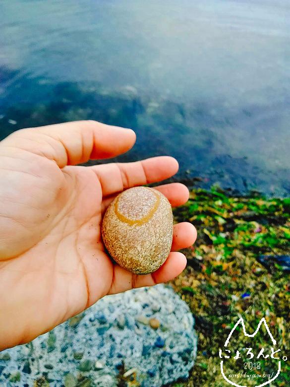 北海道・望来海岸でビーチコーミング/気になる石