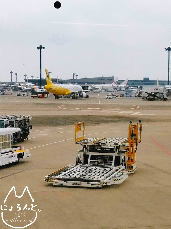 成田→新千歳・LCC/出発ゲート
