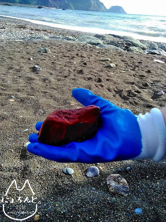 大浜海岸でビーチコーミング/伊豆の赤石