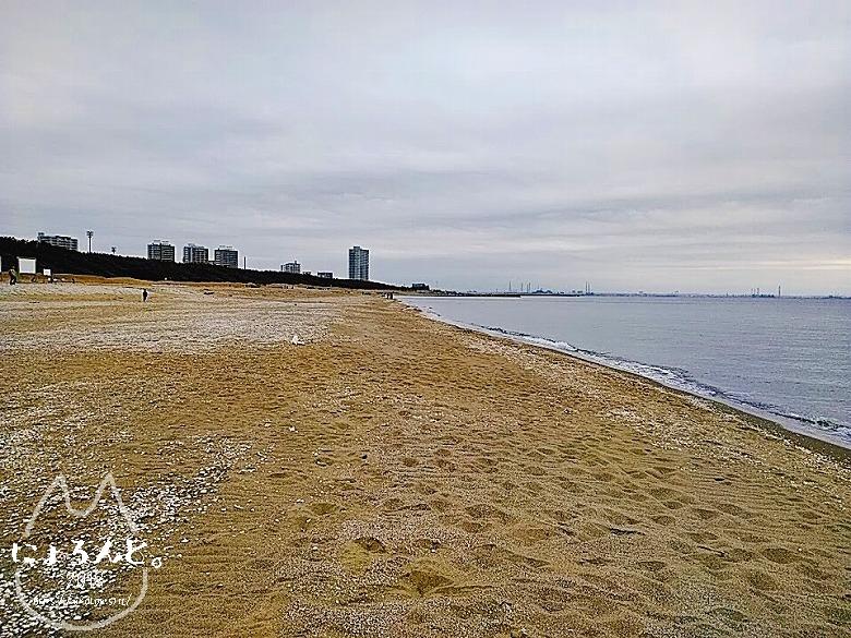 冬の幕張海岸2020・浜のロング
