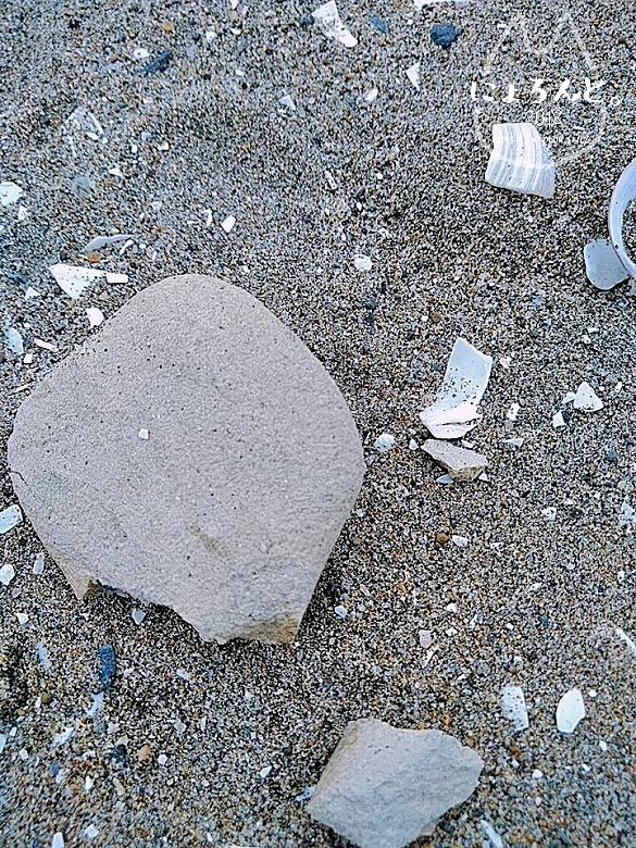 冬の幕張海岸2020・粘土?
