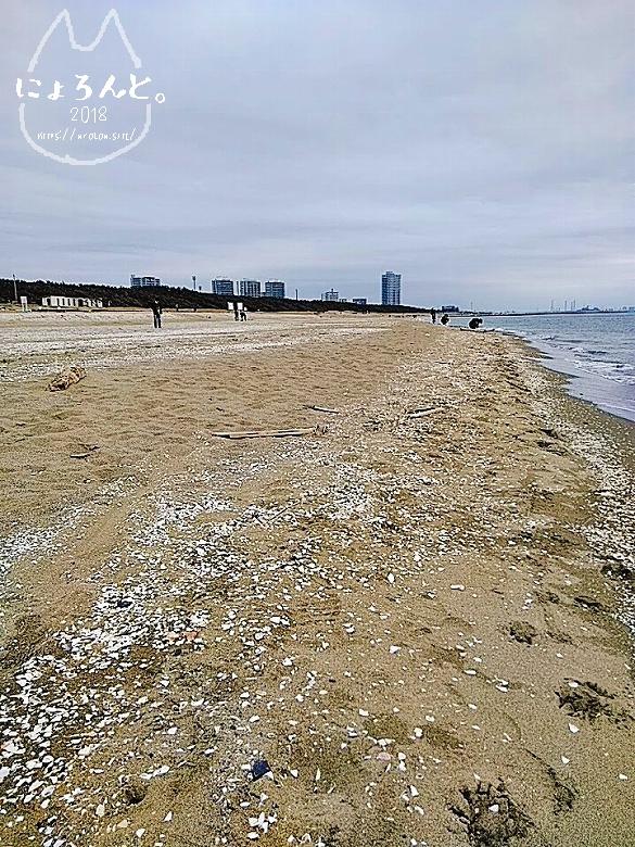 冬の幕張海岸2020・波打ちぎわ