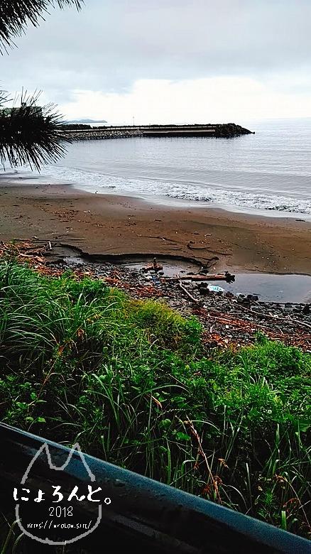 伊豆・長浜海浜公園でビーチコーミング/海岸