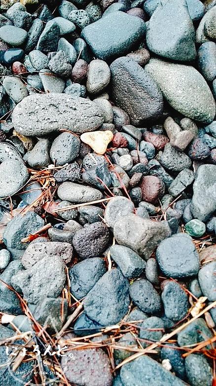伊豆・長浜海浜公園でビーチコーミング/浜の石