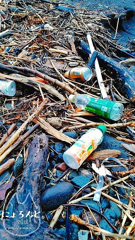伊豆・長浜海浜公園でビーチコーミング/浜のようす
