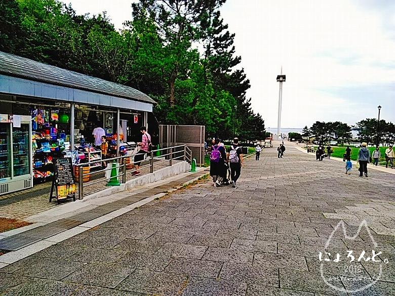 葛西臨海公園でビーチコーミング/売店