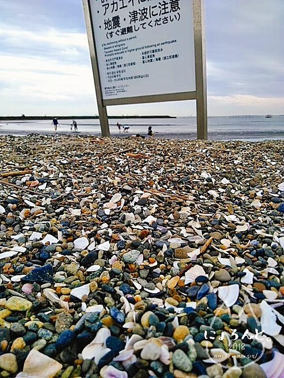 葛西臨海公園でビーチコーミング/看板下