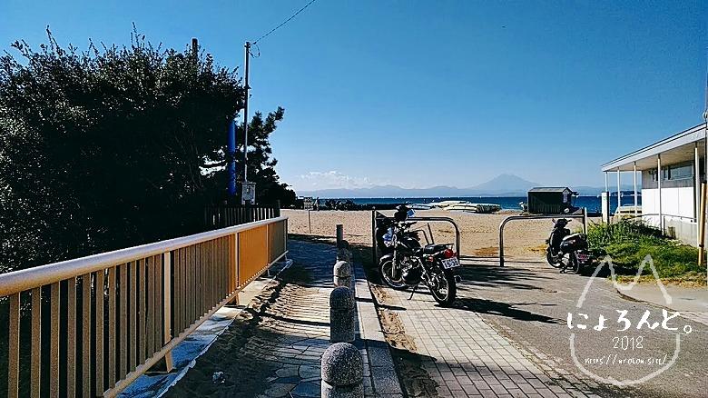 森戸海岸でビーチコーミング/森戸海岸