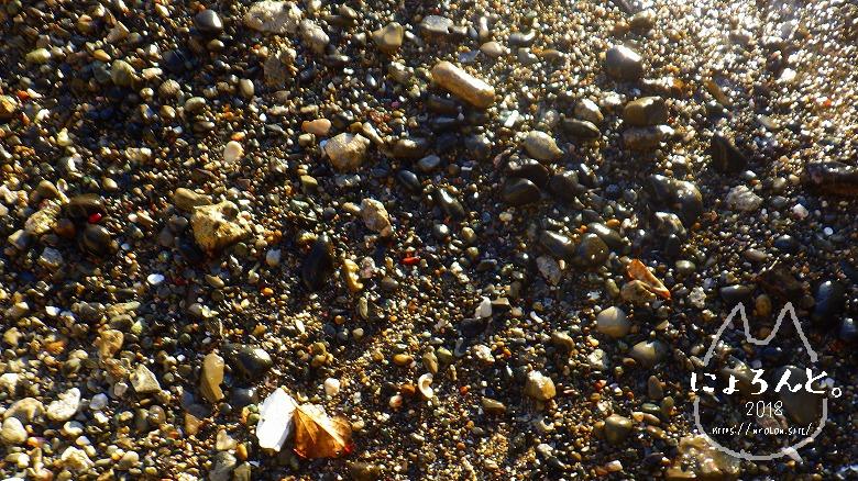立石海岸でビーチコーミング/浜の様子