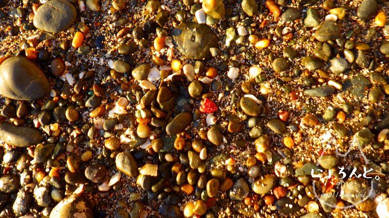 立石海岸でビーチコーミング/浜のアップ