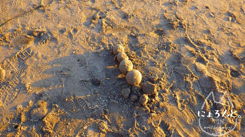 立石海岸でビーチコーミング/謎のオブジェ