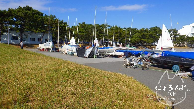 検見川浜でビーチコーミング/ヨットハーバー