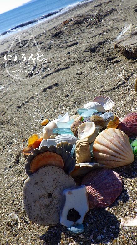 富津の布引海岸でビーチコーミング/選別タイム