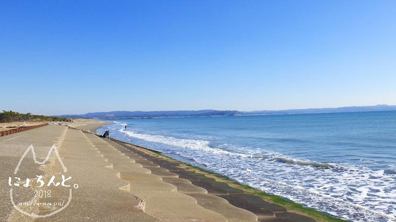 富津の布引海岸でビーチコーミング/護岸