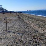 富津公園砂浜でビーチコーミング/浜と展望台