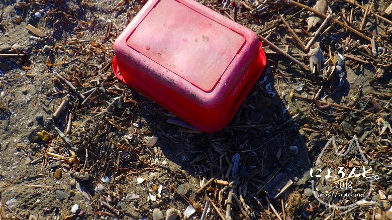 富津公園砂浜でビーチコーミング/プラスチックの箱