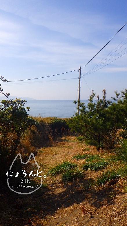 新舞子海岸でビーチコーミング/道順