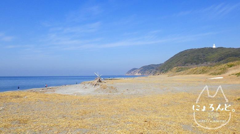 新舞子海岸でビーチコーミング/浜の右