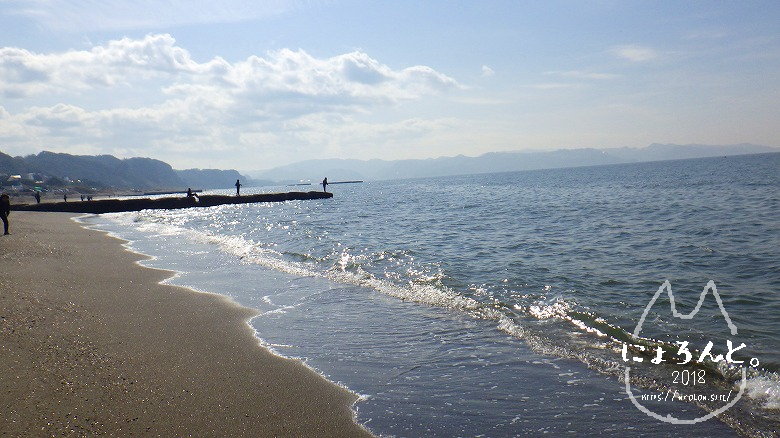 新舞子海岸でビーチコーミング/堤防