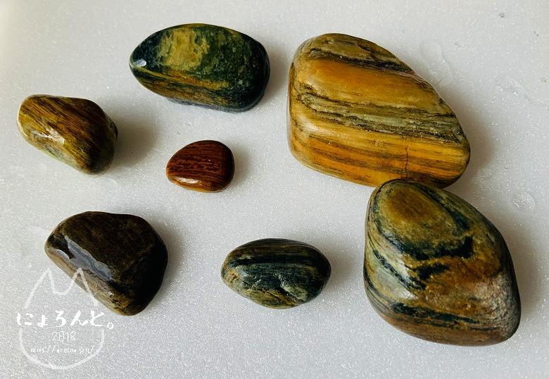 磯崎海岸でビーチコーミング/珪化木?