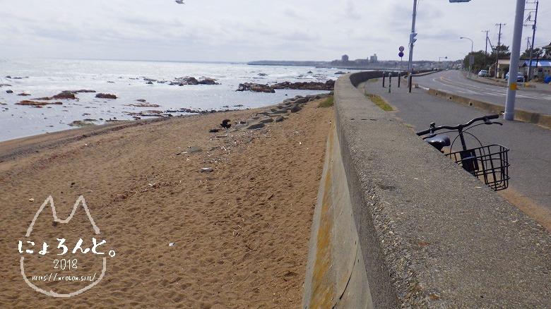 平磯海岸でビーチコーミング/浜の様子