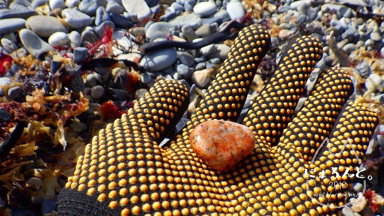 磯崎海岸でビーチコーミング/オレンジの石