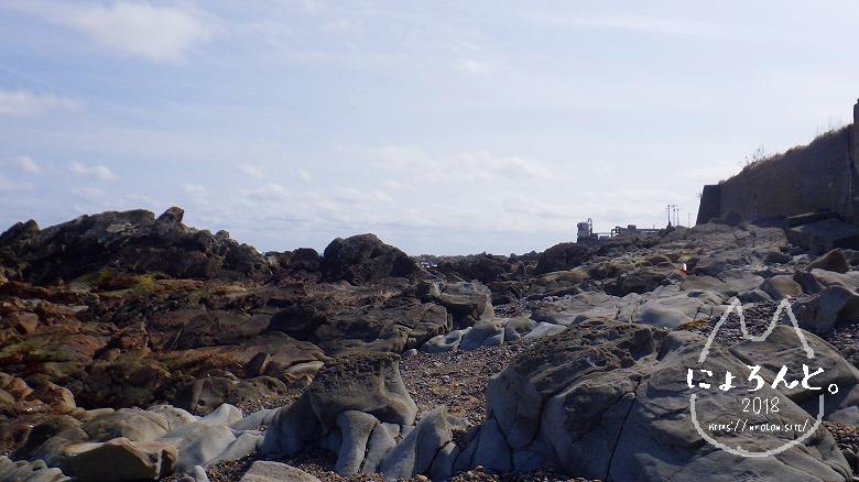 磯崎海岸でビーチコーミング/洗濯岩