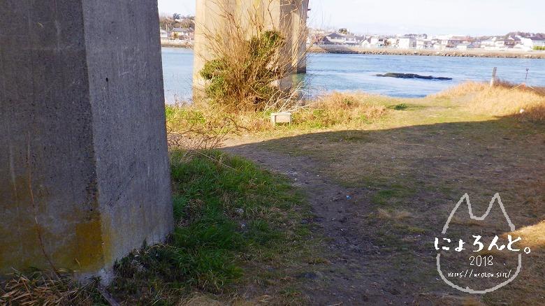 大洗町那珂川・海門橋でリバーコーミング/川への道