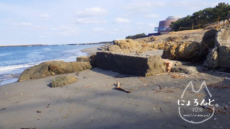 大洗町那珂川・海門橋でリバーコーミング/浜の様子