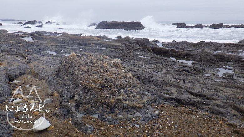 アクアワールド大洗駐車場前でビーチコーミング/洗濯岩