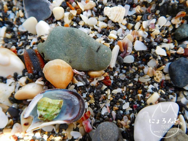 館山・坂田海岸でビーチコーミング/浜のアップ