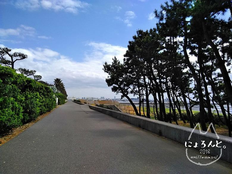 船橋三番瀬でビーチコーミング/浜の道