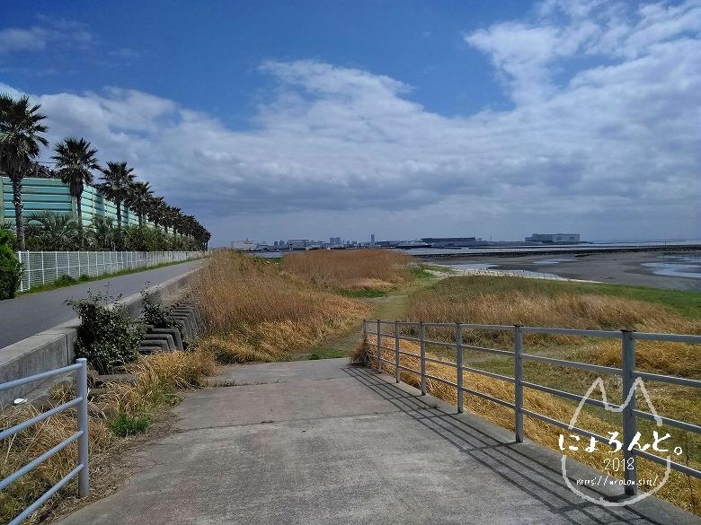 船橋三番瀬でビーチコーミング/浜のスロープ