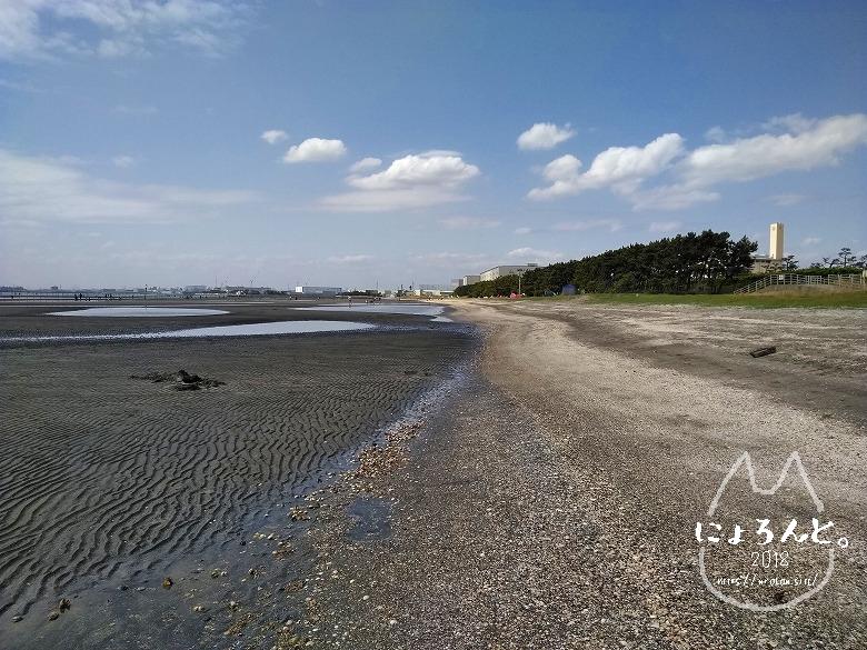 船橋三番瀬でビーチコーミング/浜の様子