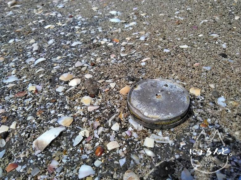 船橋三番瀬でビーチコーミング/空き缶
